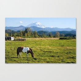 Paint Horse and Mount Rainier Canvas Print