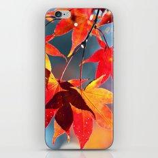 AUTUMN 4 iPhone & iPod Skin