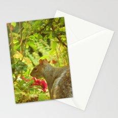 SecretGarden  Stationery Cards