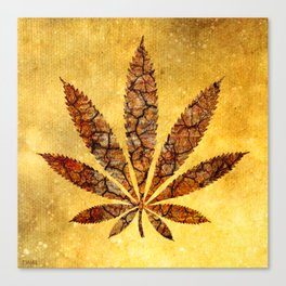 Vintage Cannabis Leaf Canvas Print