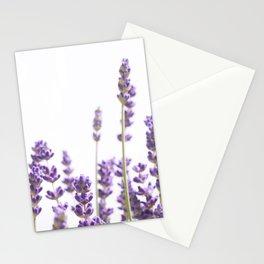 Purple Lavender #4 #decor #art #society6 Stationery Cards