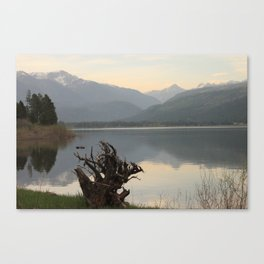 Vallecito Canvas Print