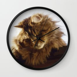 Curious Maine Coon Cat Wall Clock