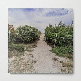 I Want to Take This Path Metal Print