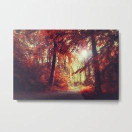 red woods Metal Print