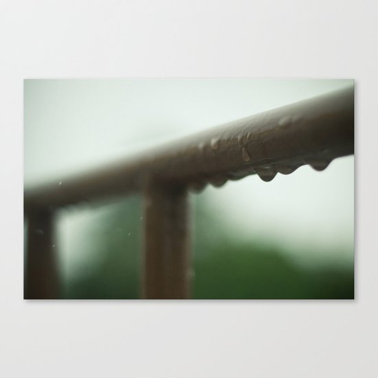 Brown Canvas Print
