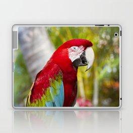 Green Winged Macaw Ara chloropterus Lahaina Maui Hawaii Laptop & iPad Skin