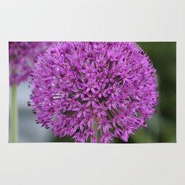 Giant Allium Rug
