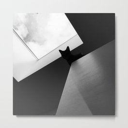 Bat Cat Metal Print