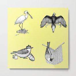 Whimsical Ink Birds Volume III Metal Print