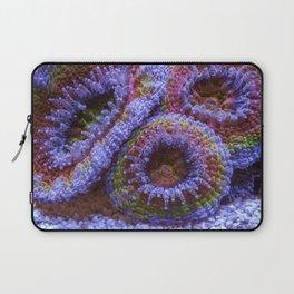 Coral Acanthastrea Lordhowensis Rainbow Laptop Sleeve