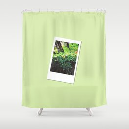 Retro Photo: Tops of Leaves Shower Curtain