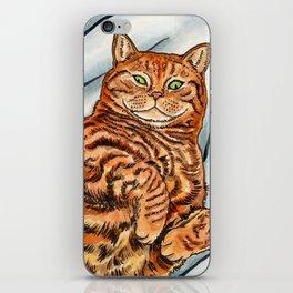 Ginger Cat iPhone Skin
