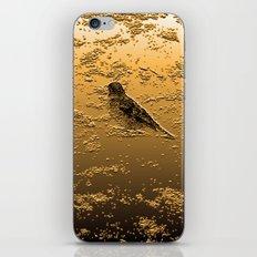 Bird on the Beach iPhone & iPod Skin