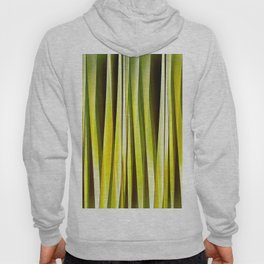 Yellow Ochre and Brown Stripy Lines Pattern Hoody