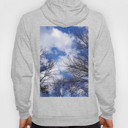Reaching for the clouds Hoody