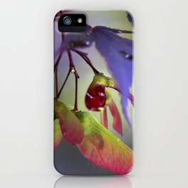 Japanese Maple Seeds iPhone Case
