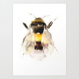 Bumblebee, fuzzy bee Art Print