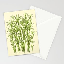 Sugar Cane Exotic Plant Pattern Stationery Cards