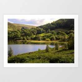 Private Fishing on Doly mynach Art Print