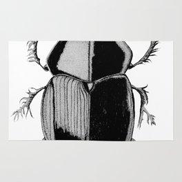 Geotrupes stecorosus Rug