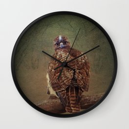 Young Red Tail Hawk Wall Clock