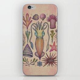 Aequoreus vita III / Marine life III iPhone Skin