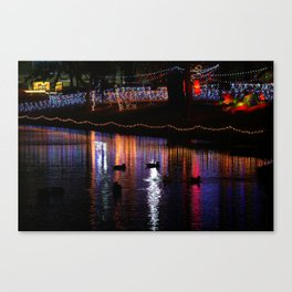 ducks on relfections Canvas Print