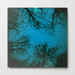 Black trees Metal Print