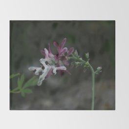Earth Smoke Flower Throw Blanket