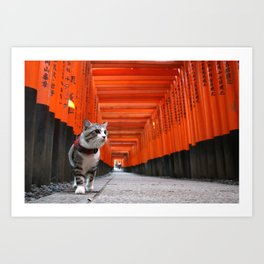 Cat to walk the Fushimi Inari Art Print