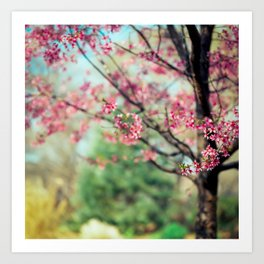 Nothing better then a colorful day!! Art Print
