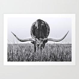 B&W Longhorn Art Print