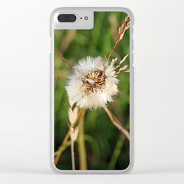 beauty faded thistle Clear iPhone Case