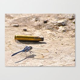 Bullet with Dragonfly wings Canvas Print