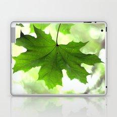 Acer Leave  4356 Laptop & iPad Skin