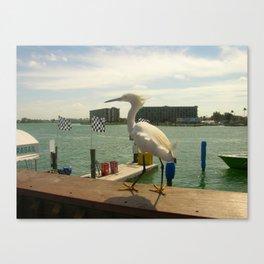 Bird Enjoying the Breeze Canvas Print