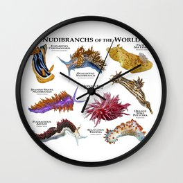 Nudibranchs of the World Wall Clock
