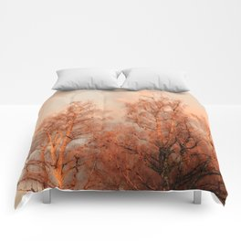 TREES AT SUNSET Comforters