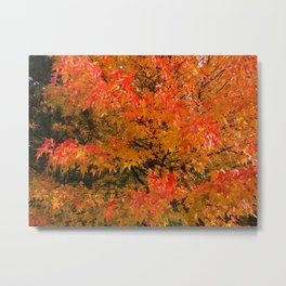 Maple Flames Metal Print