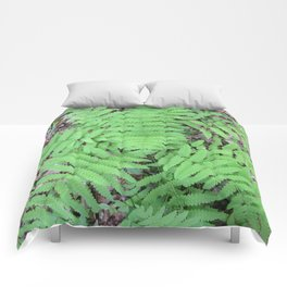 Fern From Above Comforters