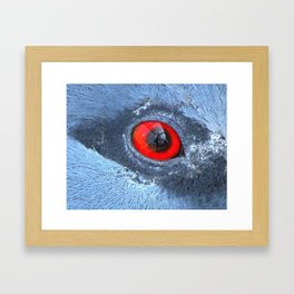 Through an animals eye Framed Art Print