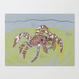 Spider Crab Canvas Print