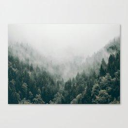 Foggy Forest 3 Canvas Print