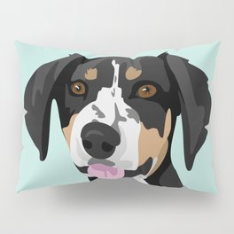 Riley coonhound Pillow Sham