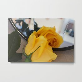 Single Yellow Rose of Texas Metal Print