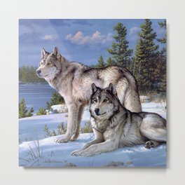 Two wolves in winter Siberian Metal Print