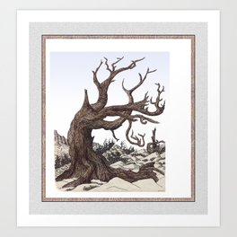 ANCIENT PINE SNAG VINTAGE PEN DRAWING Art Print