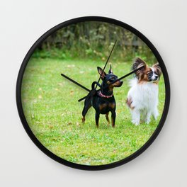 Outdoor portrait of a miniature pinscher and papillon purebreed dogs on the grass Wall Clock