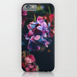 Treasure of Nature I iPhone Case